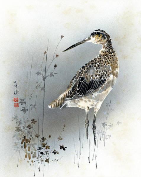 Painting - Snipe by Reikeio