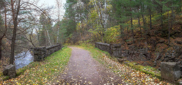 Photograph - Snively Trail by Susan Rissi Tregoning