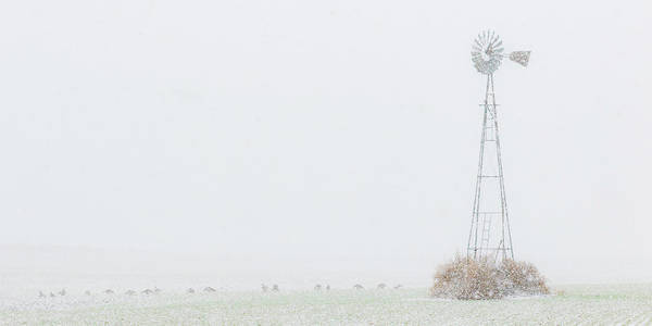 Photograph - Snow And Windmill 01 by Rob Graham