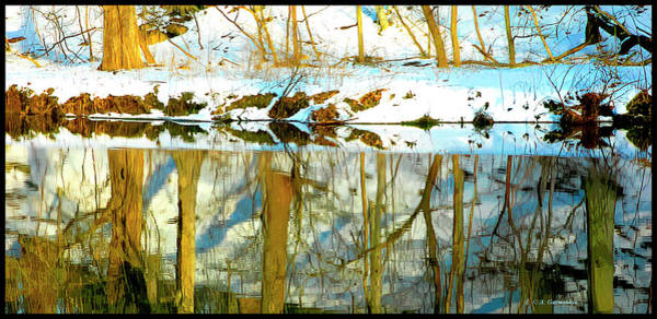 Photograph - Snow Covered Forest Floor Reflected In A Winter Stream by A Gurmankin