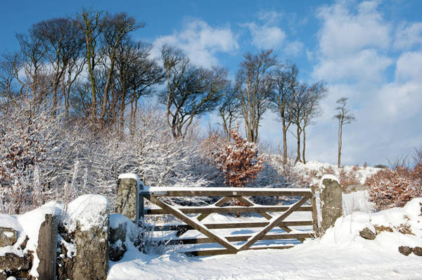 Photograph - Snow Covered Gate And Wall II by Helen Northcott