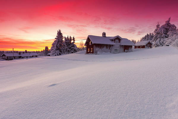 Lillehammer Photograph - Snow Covered Log Cabins And Firs At by Rob Kints