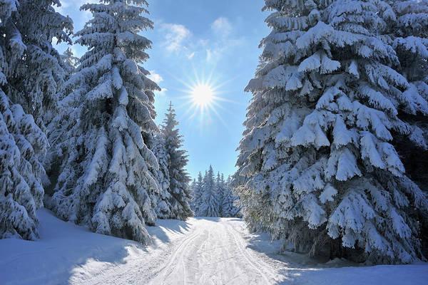 Ski Tracks Wall Art - Photograph - Snow Covered Winter Landscape With Ski by Raimund Linke