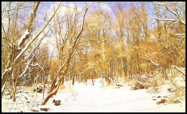 Digital Art - Snow Covering A Forest Path by A Gurmankin