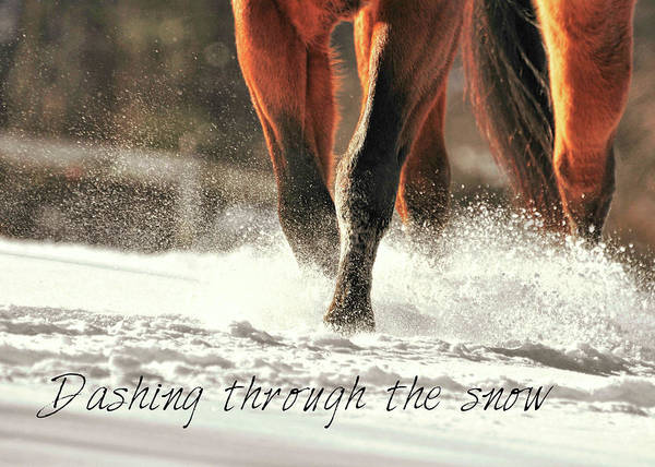Photograph - Snow Dash Quote by JAMART Photography
