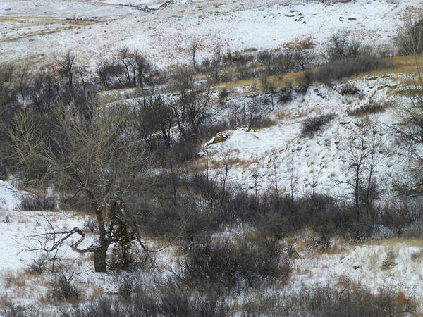 Photograph - Snow-dusted Slope County by Cris Fulton