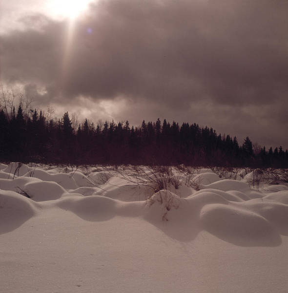 Snowfield Photograph - Snow Field by Robert Natkin
