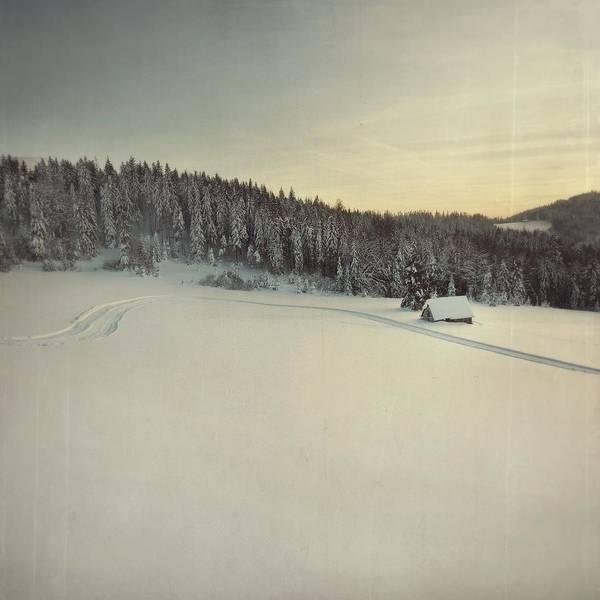 Snow Field Art Print by Tom