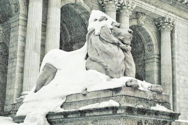 Photograph - Snow Has Fallen by JAMART Photography