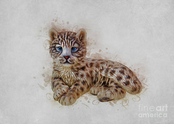 Digital Art - Snow Leopard by Ian Mitchell