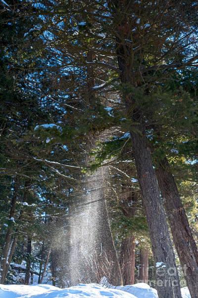 Photograph - Snow Melt by Matthew Nelson