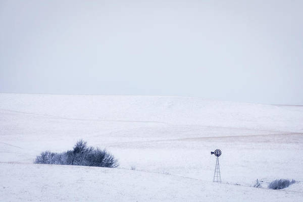 Photograph - Snow On The Pasture by Scott Bean