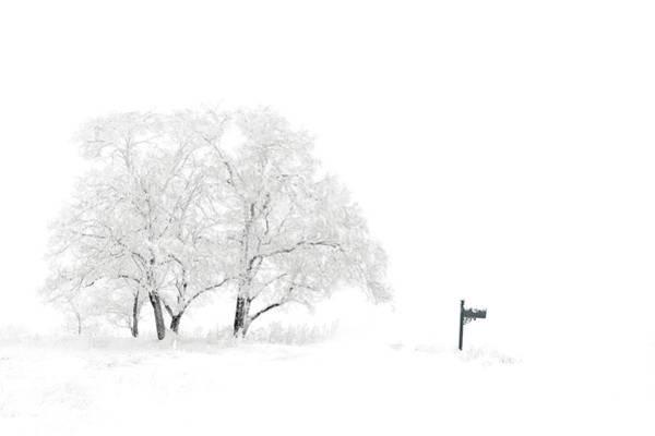 Wall Art - Digital Art - Snow Scene by Tim Palmer