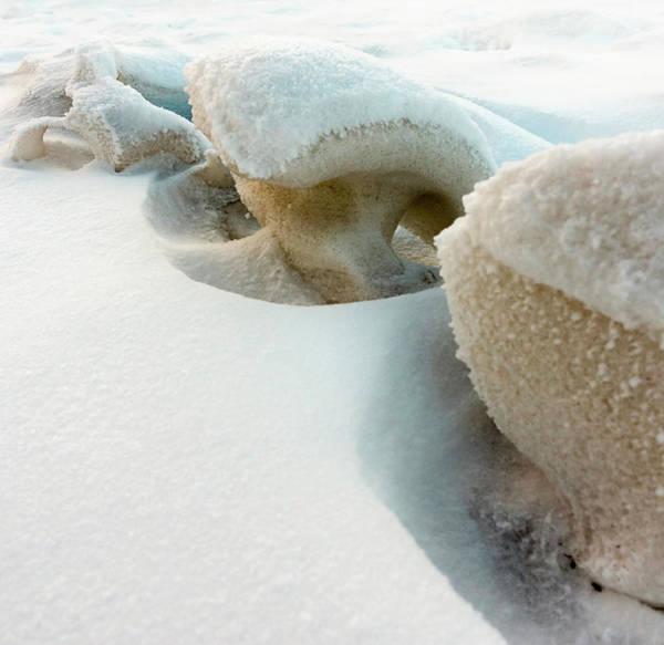 Photograph - Snow Sculpture  by Karen Rispin