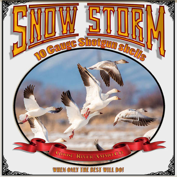 Photograph - Snow Storm 10 Gauge Shotgun Shells by TL Mair
