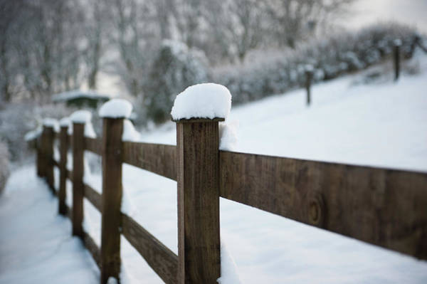 Photograph - Snow Topped Fence II by Helen Northcott