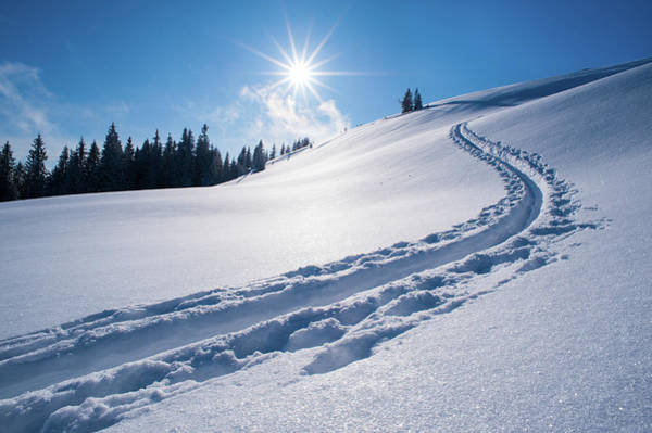Ski Tracks Wall Art - Photograph - Snow Track Of A Backcountry Skier In by Olaf Broders
