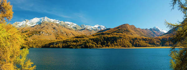 Wall Art - Photograph - Snowcapped Mountains And Larch Trees by Panoramic Images
