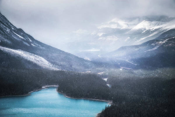 Peyto Lake Wall Art - Photograph - Snowfall At Peyto Lake No 1 by Chris Fletcher