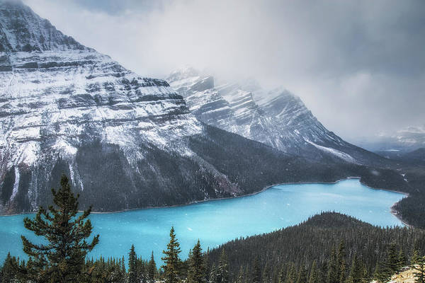 Peyto Lake Wall Art - Photograph - Snowfall At Peyto Lake No 2 by Chris Fletcher