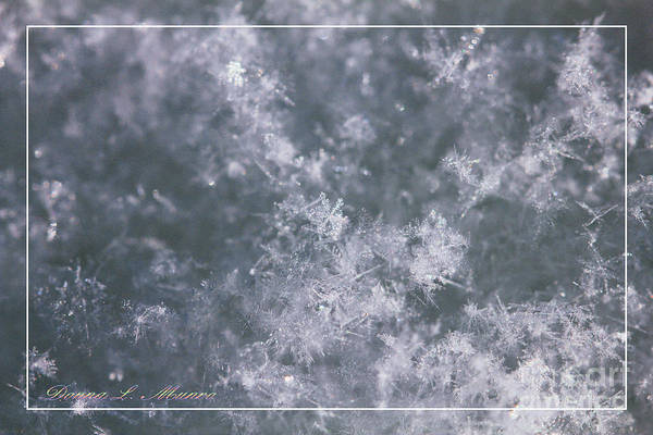 Photograph - Snowflake Glitter by Donna L Munro
