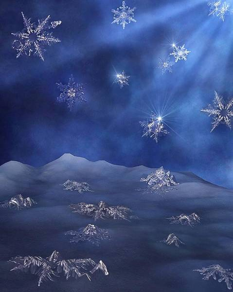 Photograph - Snowflake Graveyard by Mark Fuller