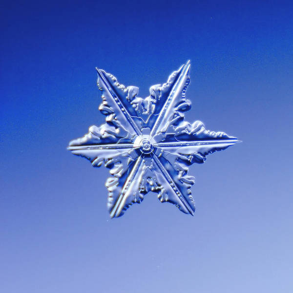 Decoration Photograph - Snowflake On Blue Background by Fwwidall