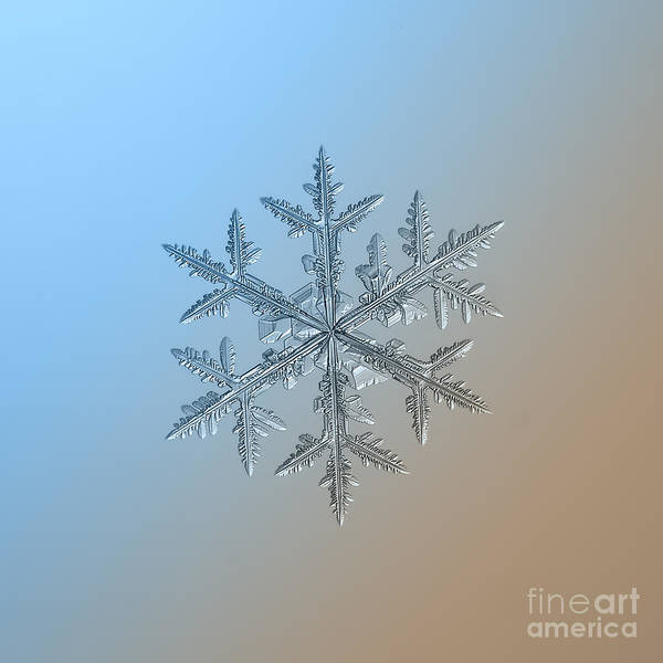 Dendrite Wall Art - Photograph - Snowflake On Smooth Blue-brown Gradient by Alexey Kljatov