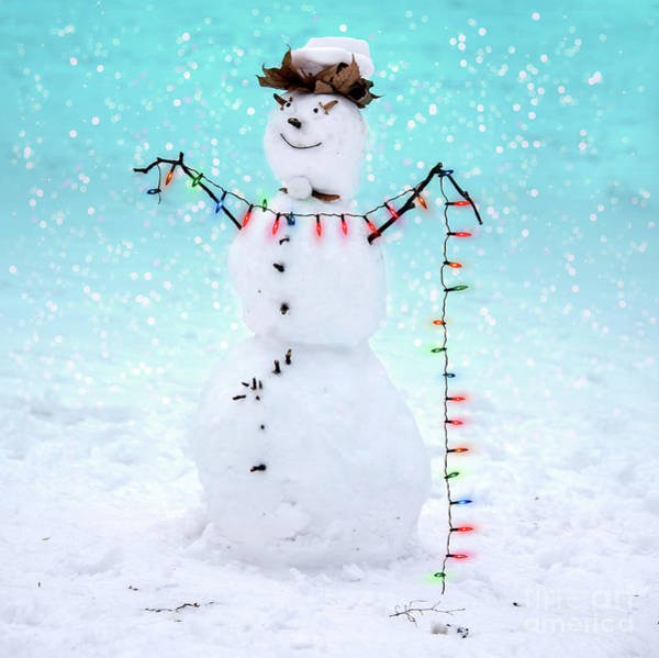Wall Art - Photograph - Snowman by Juli Scalzi