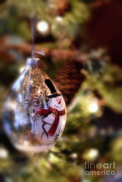 Photograph - Snowman Ornament by Lois Bryan