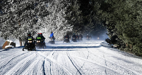 Photograph - Snowmobiling Yellowstone by Karen Wiles