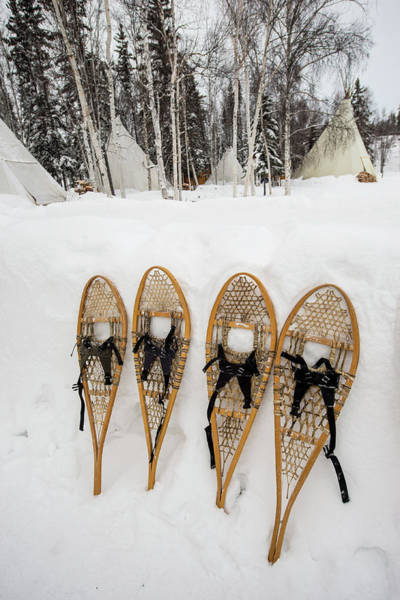 Yellowknife Wall Art - Photograph - Snowshoes, Yellowknife, Northwest by Michael Defreitas