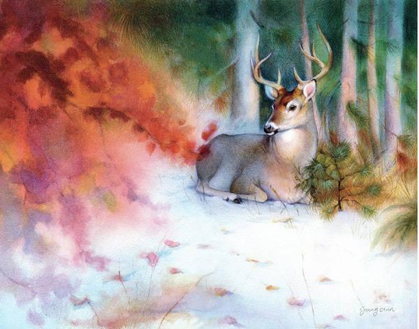Black Buck Painting - Snowy Autumn Black Tailed Deer by Tracy Herrmann