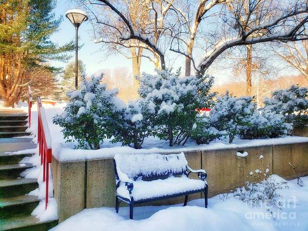 Snowy Bench Art Print