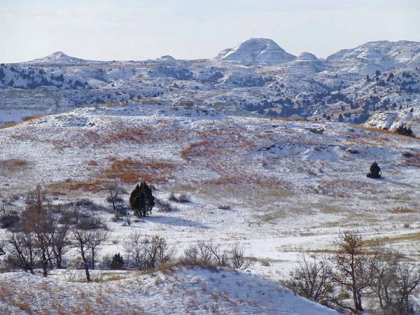 Photograph - Snowy Dakota Prairie by Cris Fulton
