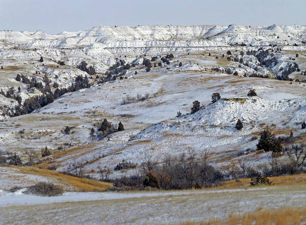 Photograph - Snowy Dakota West by Cris Fulton