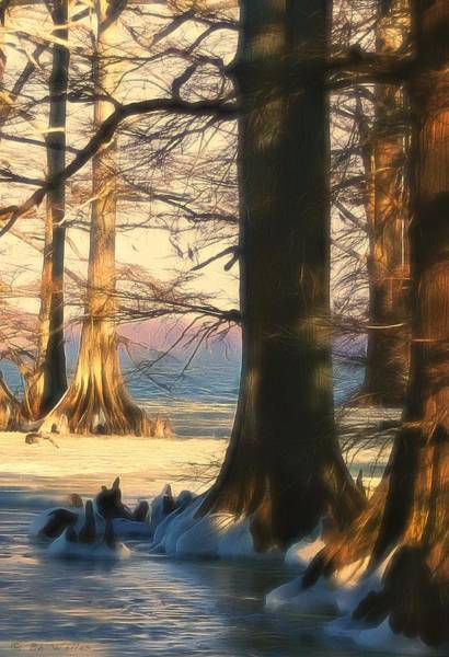 Photograph - Snowy Evening At Reelfoot Lake by Bonnie Willis