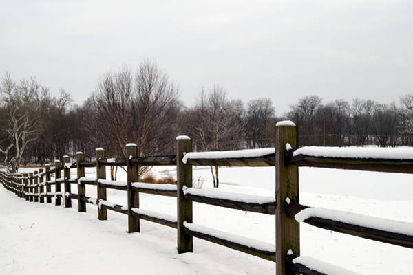 Wall Art - Photograph - Snowy Fenceline by Beth Collins
