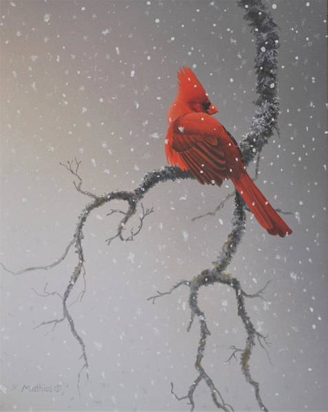 Painting - Snowy Perch by Peter Mathios