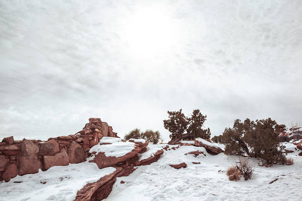 Photograph - Snowy Trail At Dead Horse Point by Jeanette Fellows