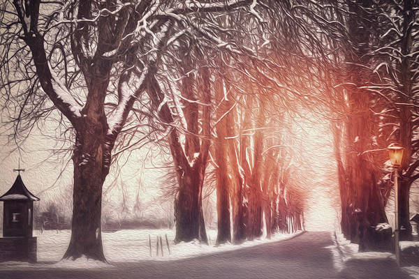 Wintry Photograph - Snowy Tree Lined Road Mondsee Austria by Carol Japp
