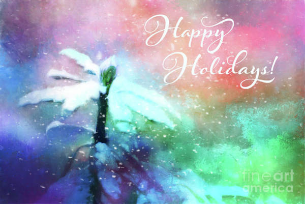 Photograph - Snowy Winter Abstract Holiday Card by Anita Pollak