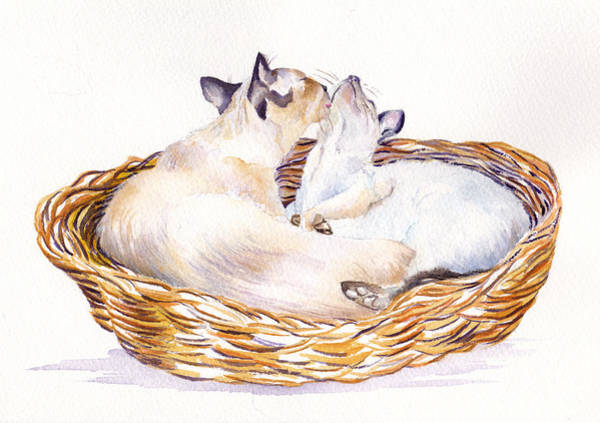 Wall Art - Painting - Snuggling Cats by Debra Hall