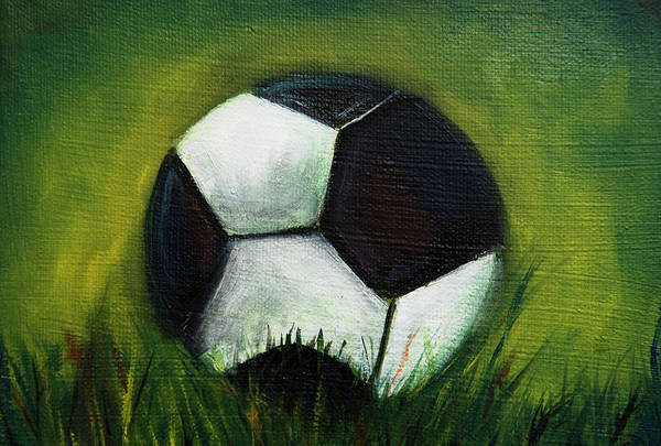 Mfa Wall Art - Photograph - Soccerball In Grass by Iris Richardson