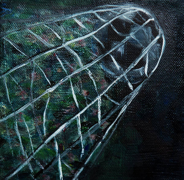 Mfa Wall Art - Photograph - Soccerball In Net by Iris Richardson