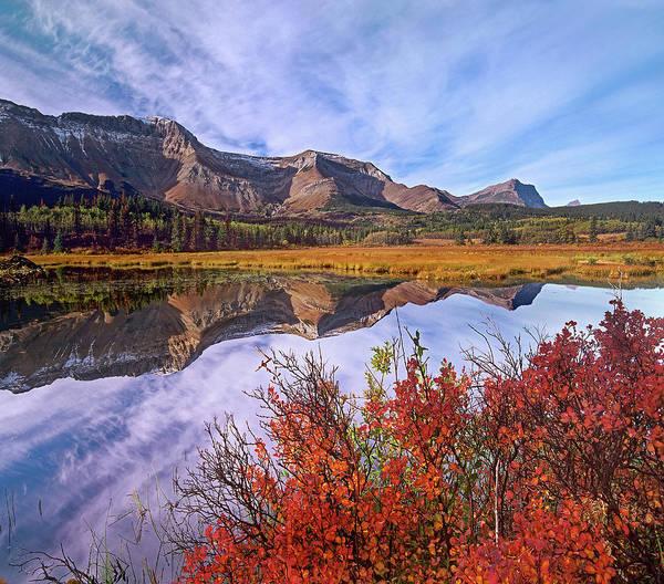 Photograph - Sofa Mountain Reflecteion, Waterton by Tim Fitzharris