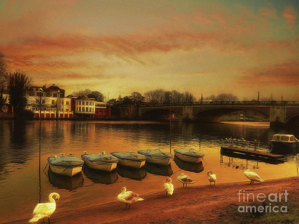 Wall Art - Photograph - Soft And Warm by Leigh Kemp
