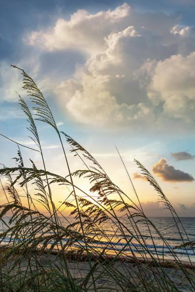 Wall Art - Photograph - Soft Beach Breezes by Debra and Dave Vanderlaan
