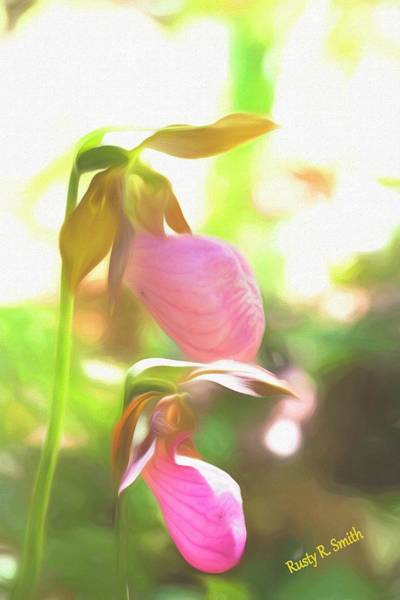 Digital Art - Soft Lady Slippers. by Rusty R Smith