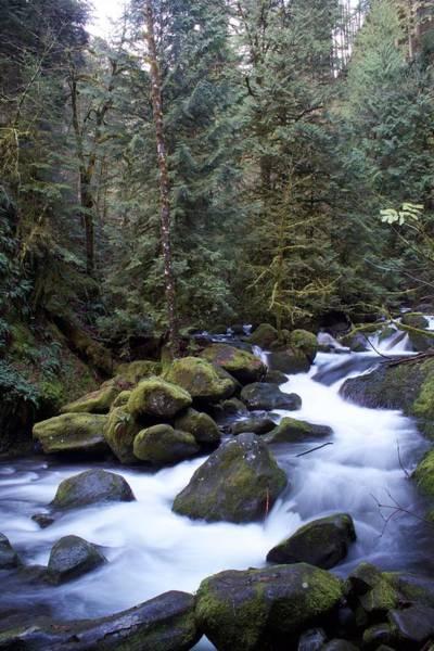 Photograph - Soft Multnomah Flow by Dylan Punke